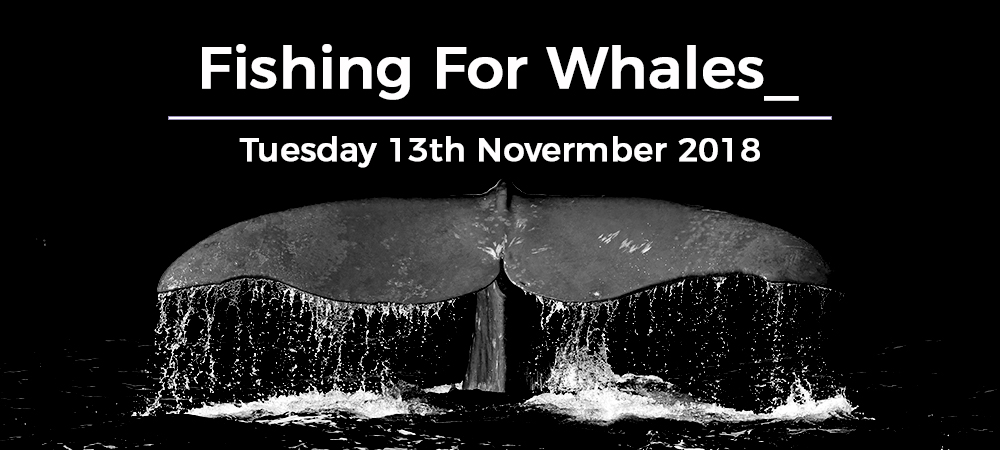 fishing for whales sales and marketing